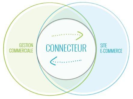 Connecteur Sage