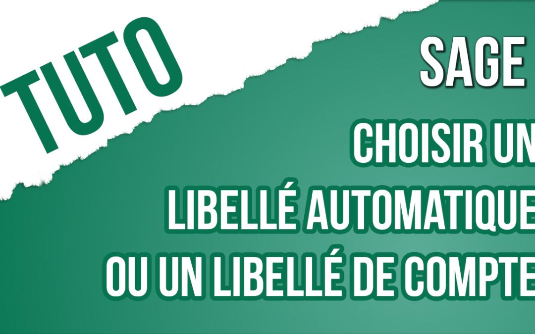 Trucs & Astuce 12 : Comment choisir un libellé automatique ou libellé de compte général (Comptabilité i7)
